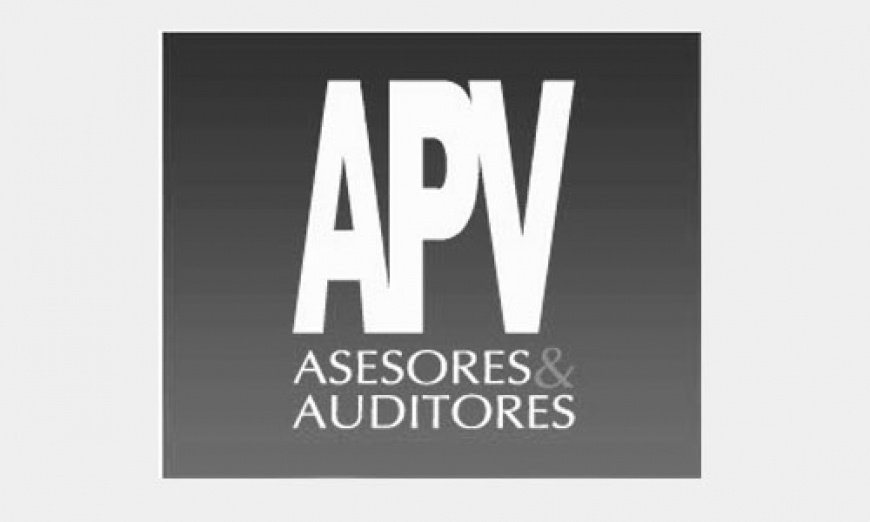 APV Asesores & Auditores